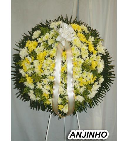 anjinho1